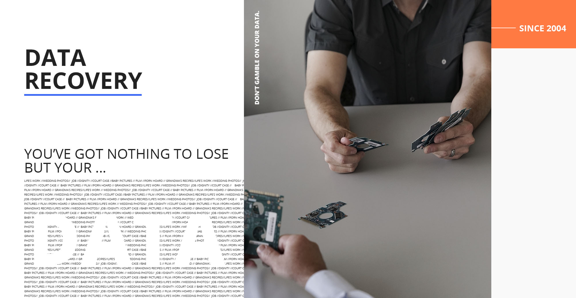 data recovery cover photo - you've got nothing to lose